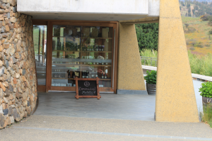 matetic vineyards, chile, wine EQ, Rosario Valley, San Antonio Valley